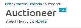 tools-file-248-auktionator-html